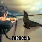 focaccia, caccia, foca, calambuh